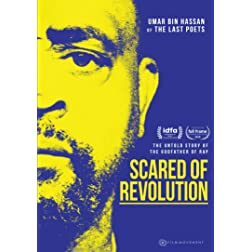Scared of Revolution
