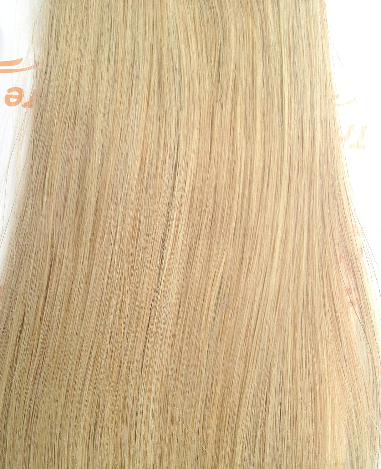 Tressmatch human hair clip extensions champagne blonde preen tressmatch human hair clip extensions champagne blonde pmusecretfo Image collections