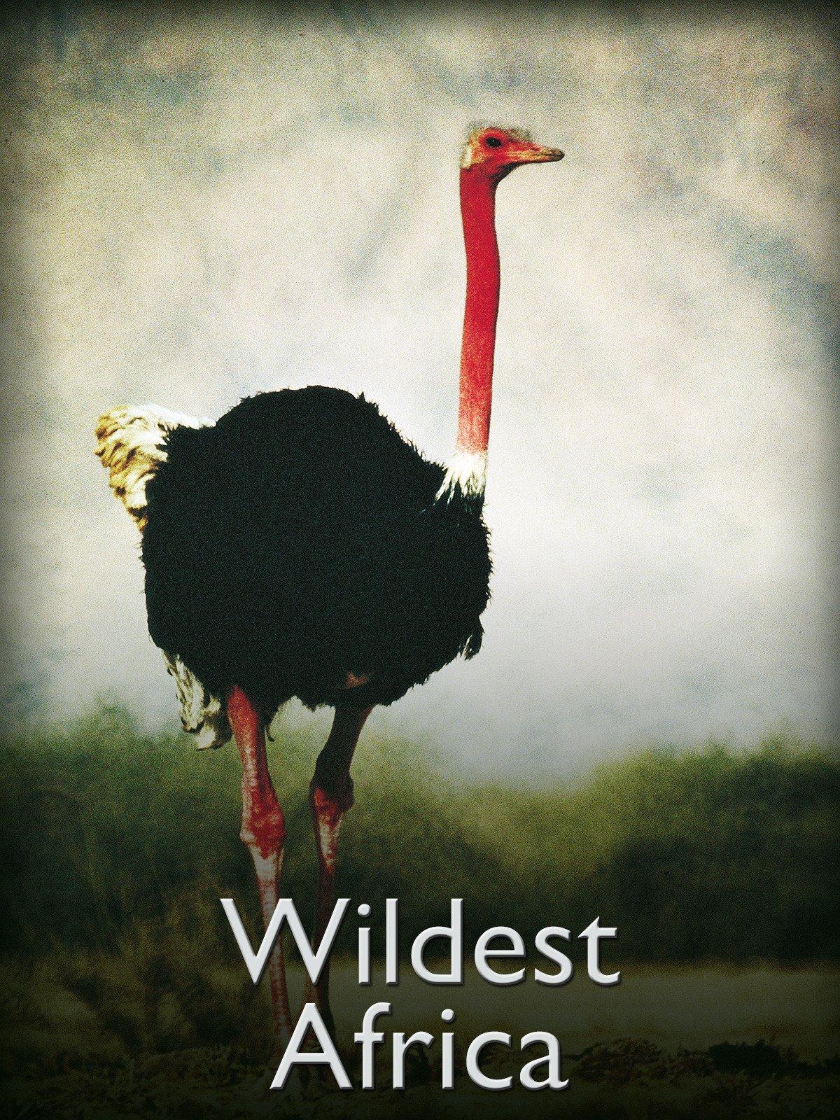 Wildest Africa on Amazon Prime Instant Video UK