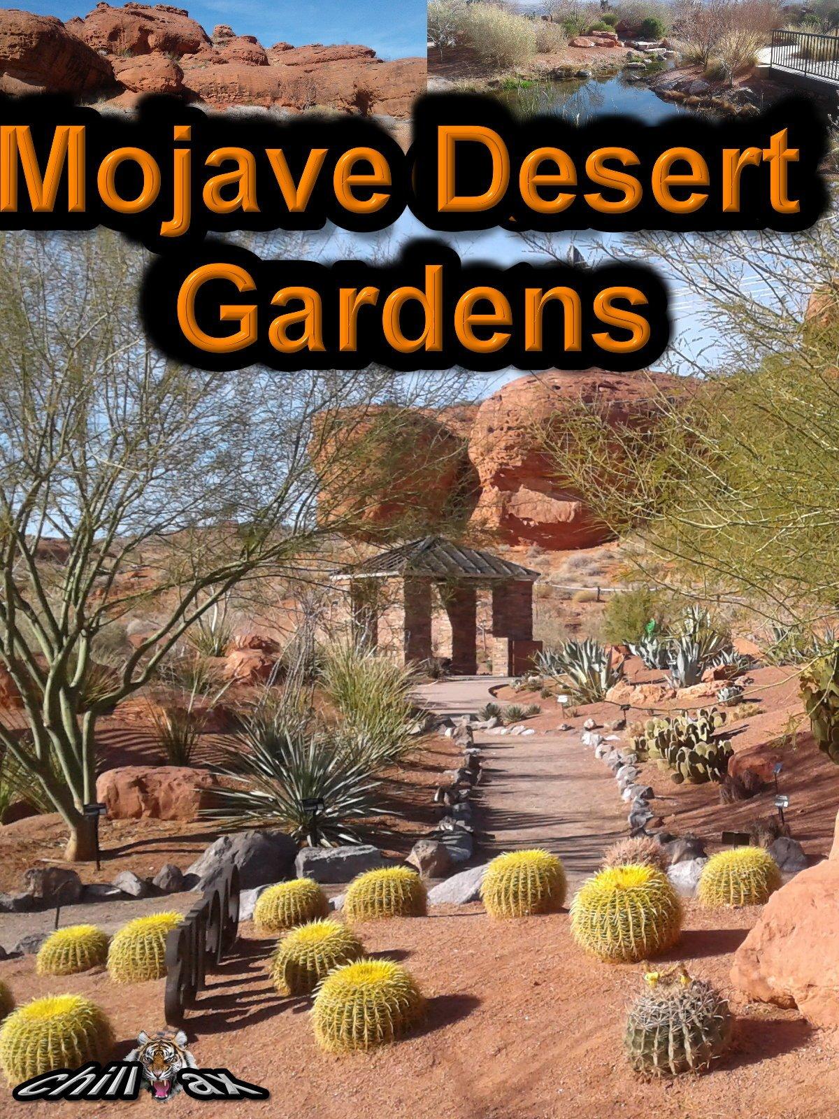 Mojave Desert Gardens