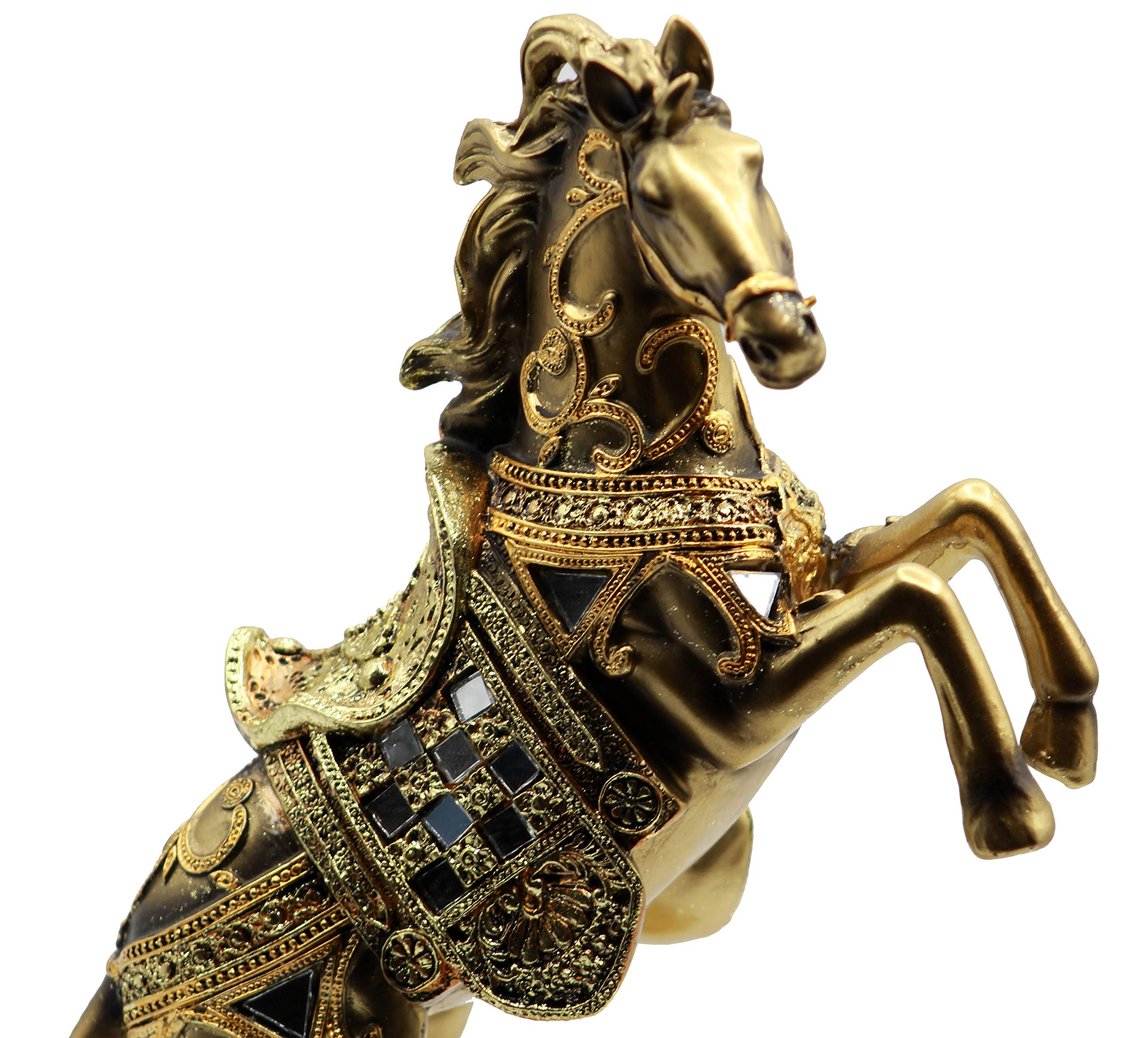 Buy Gold HorseProducts Now!