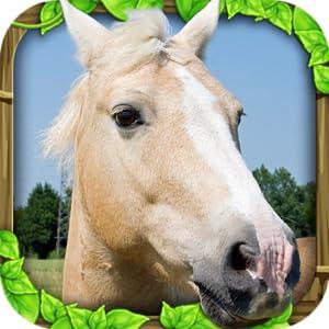 Wild Horse Simulator from Gluten Free Games