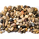 Supply Guru SG2133 River Rocks, Pebbles, Outdoor Decorative Stones, Natural Gravel, For Aquariums, Landscaping, Vase Fillers, Succulent, Tillandsia, Cactus pot, Terrarium Plants, 2 LB. (32-Oz). (Color: 1, Tamaño: 32 ounce bag)