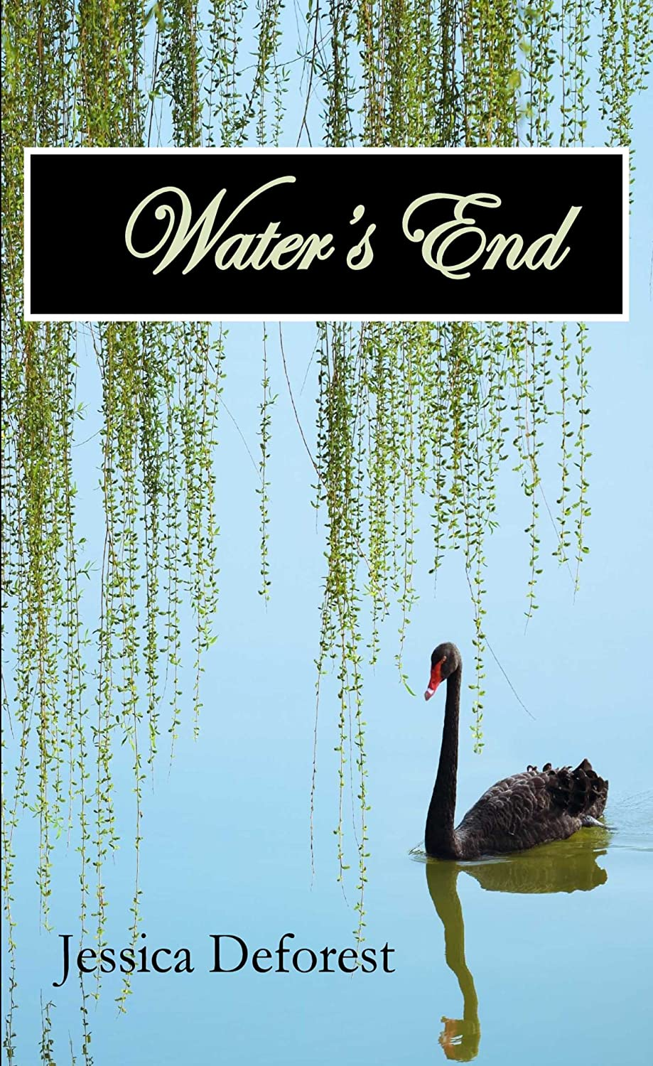 Water's End: A Love Rediscovered