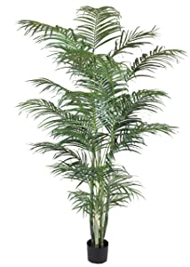 Branches & Blooms 245 cm Artificial Areca Palm, Green       Customer review and more information