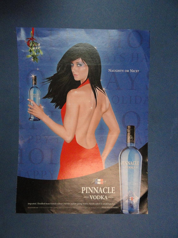 Pinnacle 2008 print ad
