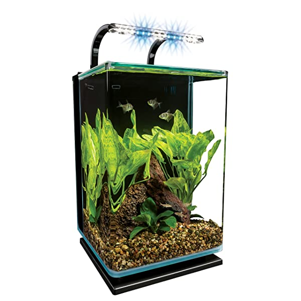 Marineland Contour Glass Aquarium Kit with Rail Light Review