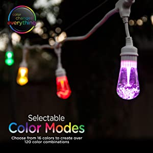 Enbrighten Seasons LED Warm & Color Changing Café String Lights with Oil-Rubbed Bronze Lens Shade, White, 48', 24 Impact Resistant Lifetime Bulbs, Wireless, Weatherproof, Indoor/Outdoor, 43390 (Color: White Oil Rubbed Bronze, Tamaño: 48 ft.)