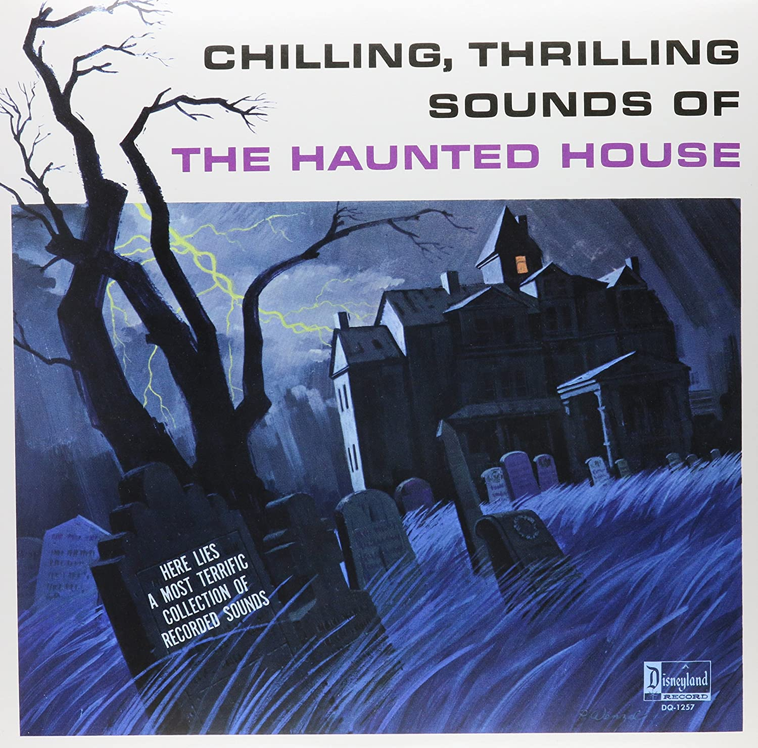 Album Art for Chilling, Thrilling Sounds Of The Haunted House by Various Artists