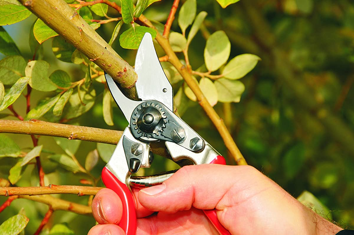 Felco F-6 Classic Pruner For Smaller Hands