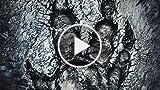 CGR Trailers - EVOLVE Stalker Trailer