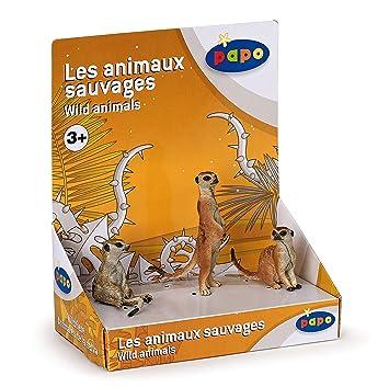 Papo - 50099 - Figurine - Animaux - Boîte Présentoir 3 Suricates