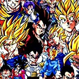 Wallpapers Saiyan Hero Dragon Z full HD