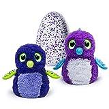 Hatchimals Draggle, Blue/Purple Egg (Color: Purple/Blue, Tamaño: L)