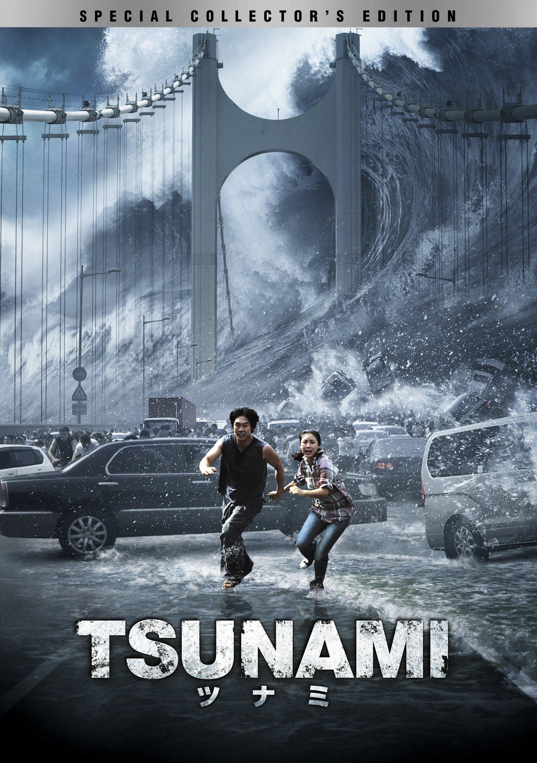 TSUNAMI -ツナミ- スペシャル・コレクターズ・エディション [DVD]
