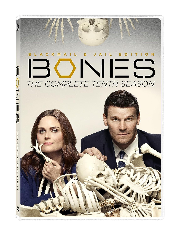 『BONES』墓堀人の謎…鮮やかで冷酷無比な罪と下された罰とは?