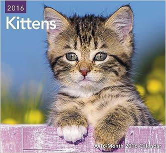 Kittens Mini Wall Calendar (2016)