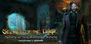 Secrets of the Dark: Mystery of the Ancestral Estate Collector's Edition by Big Fish Games