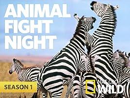 Animal Fight Night, Season 1