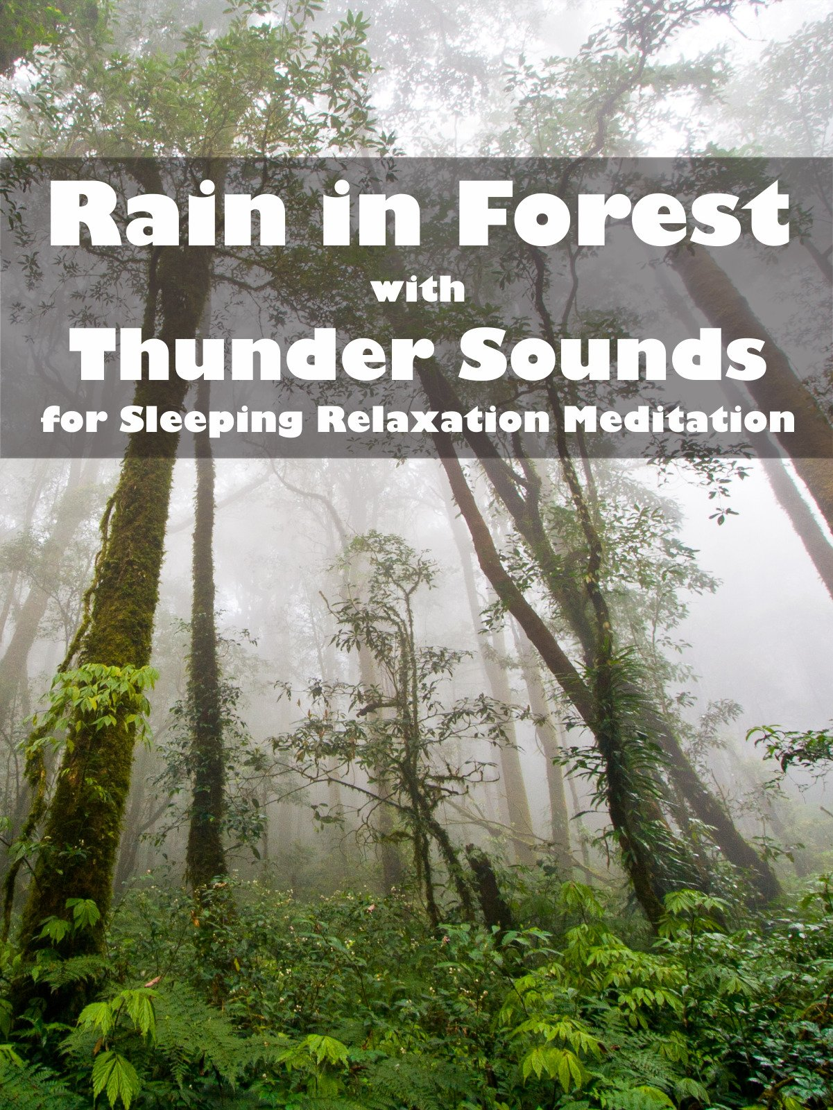 Rain in Forest with Thunder Sounds for Sleeping Relaxation Meditation