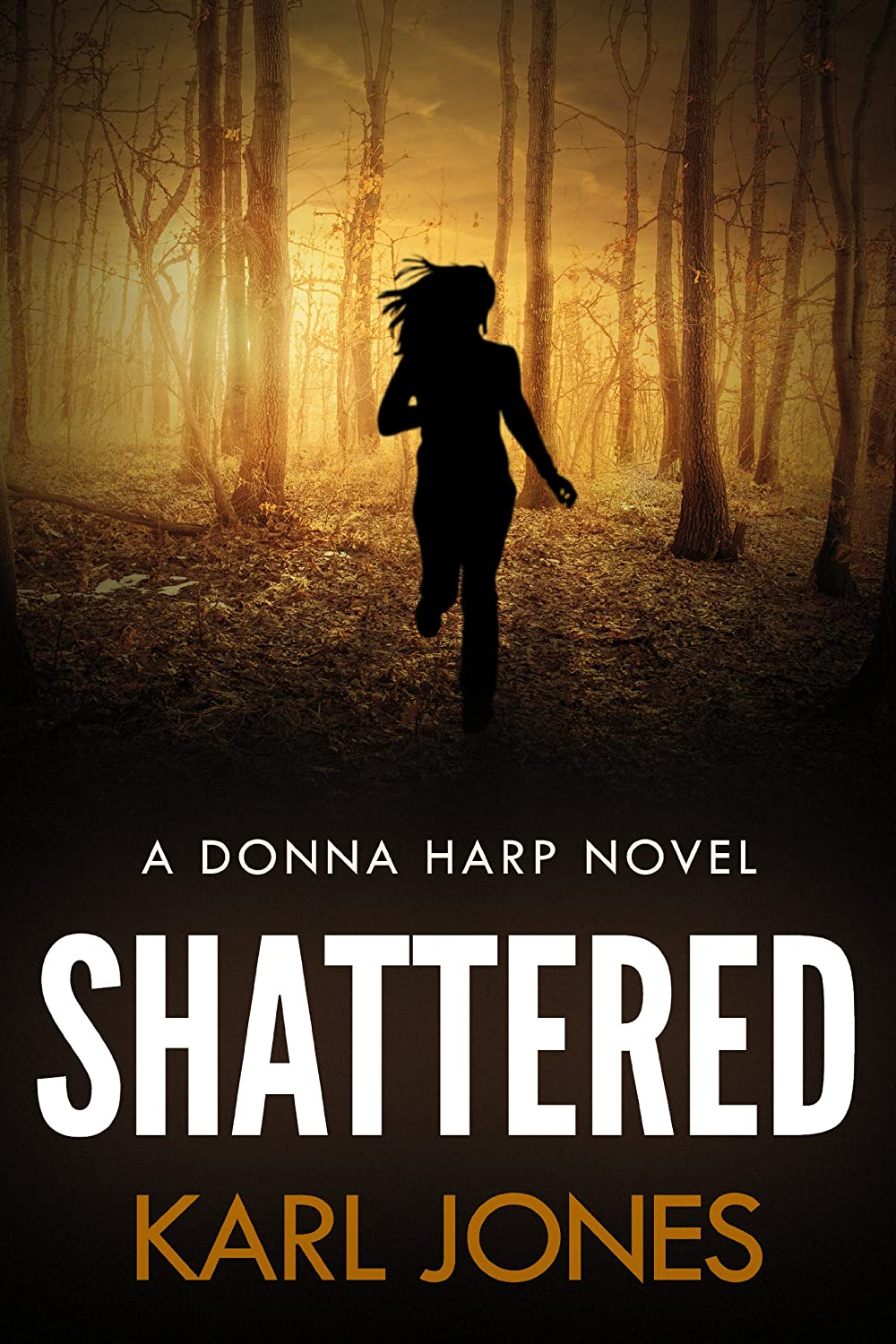 shattered-Karl-Jones