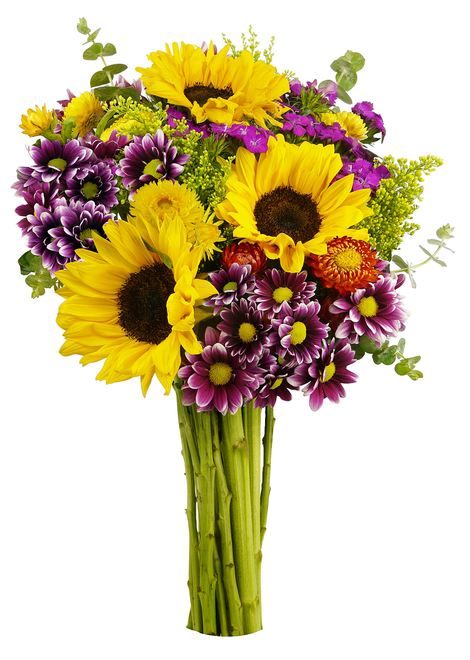 Buy Flower Delivery Now!
