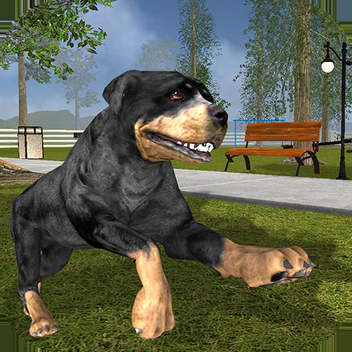 rottweiler-dog-life-simulator
