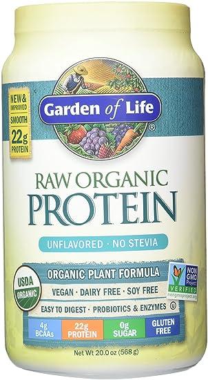 Garden of Life, Rohprotein, Beyond Organic Protein Formula, 22 Unzen (622 g)