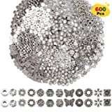 EuTengHao 600pcs Spacer Beads Jewelry Bead Charm Spacers Alloy Spacer Beads for Jewelry Making DIY Bracelets Necklace and Crafting (12 Styles,Dull Silver and Bright Silver) (Color: Dull Silver and Bright Silver)