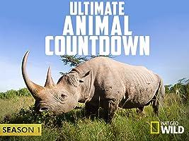 Ultimate Animal Countdown Season 1 [HD]
