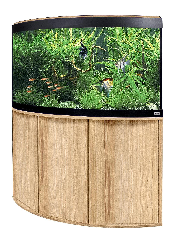 viel passiert nachholbedarf der letzten 3 jahre aquariumreport. Black Bedroom Furniture Sets. Home Design Ideas