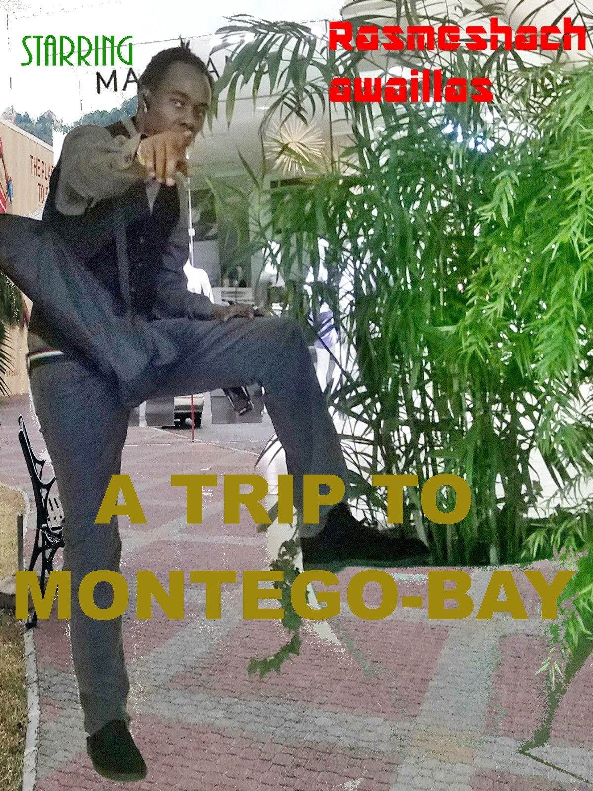A Trip To Montego-bay