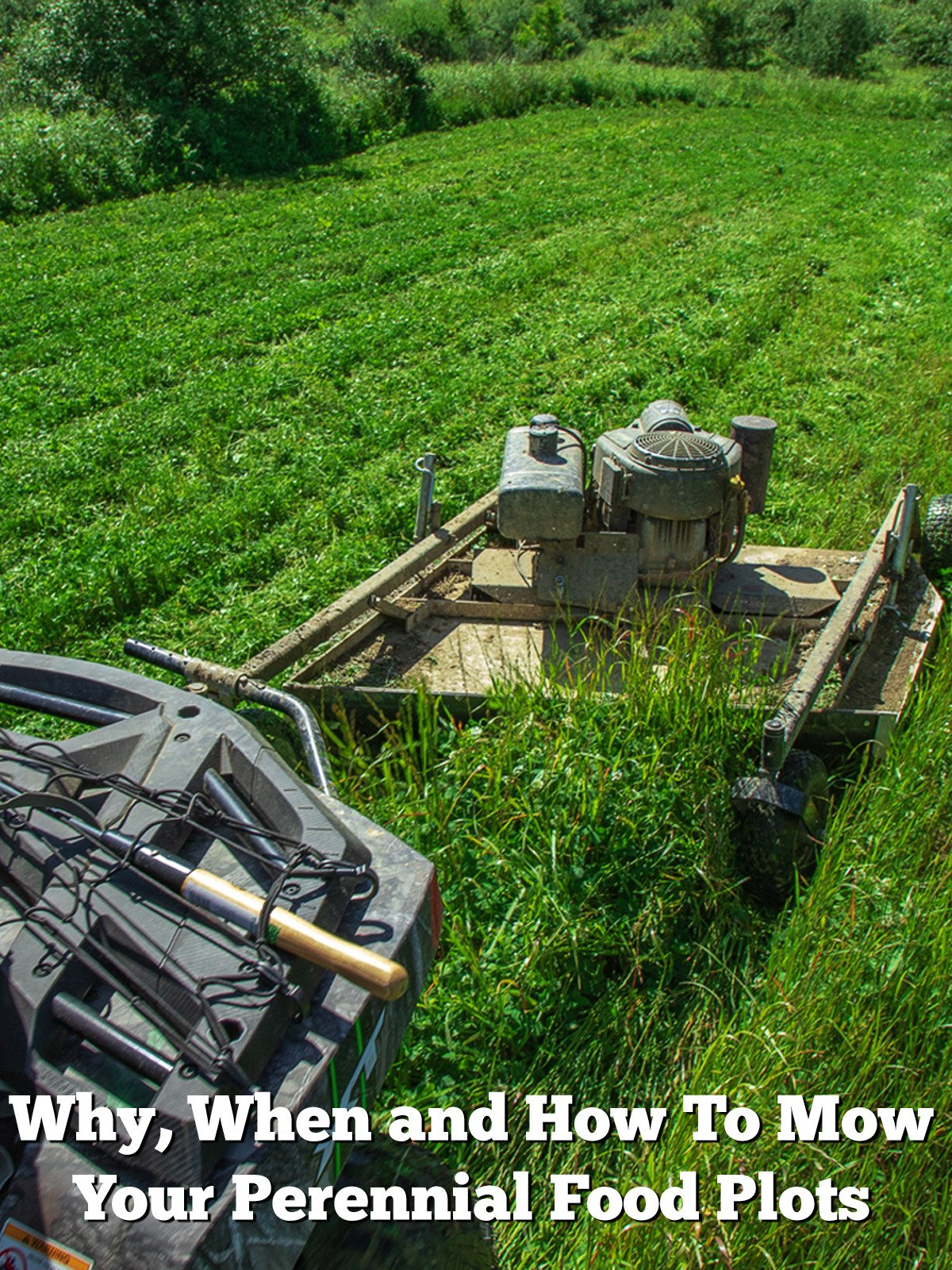 Why, When and How To Mow Your Perennial Food Plots
