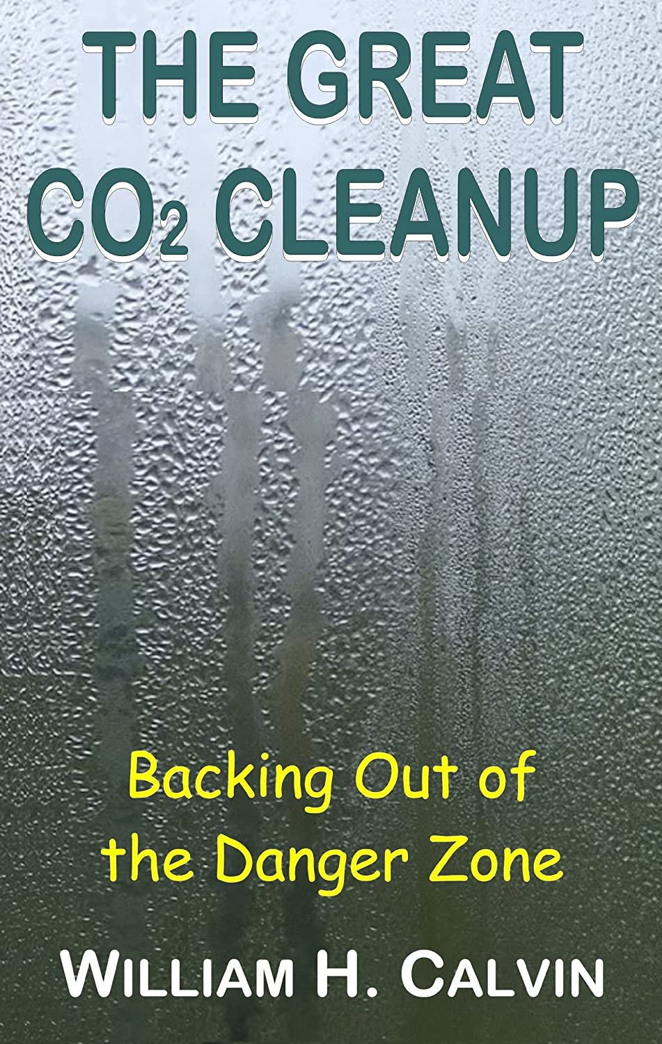 The Great CO2 Cleanup