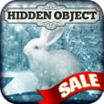 Hidden Object - Animal Seasons
