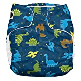 Imagine Baby Products XL Pocket Diapers, Snap, Rawr (Color: Rawr, Tamaño: X-Large)