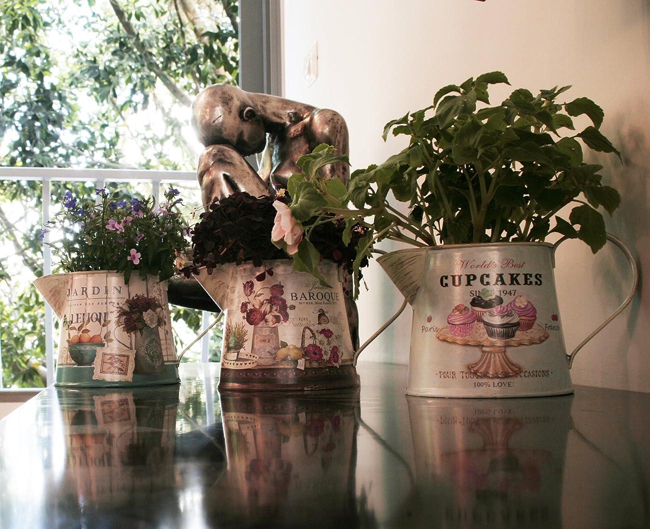 Janazala Small Flower Pots Indoor Decorative, Indoor Flower Pots, Set of 3 (Metal, Colorful) 5