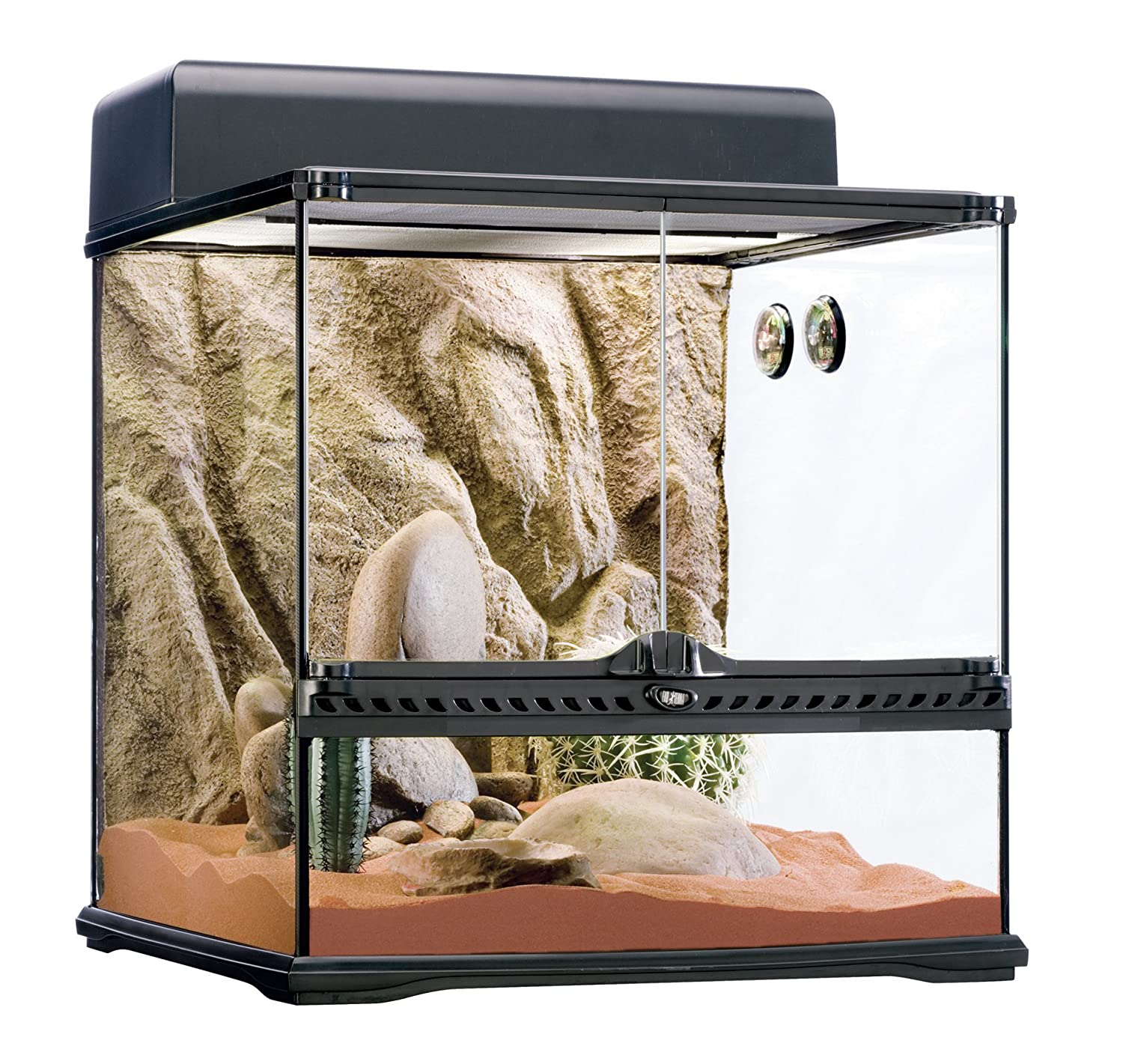 bearded dragon vivarium setup vivarium world. Black Bedroom Furniture Sets. Home Design Ideas