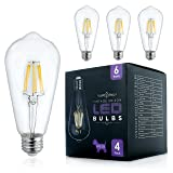 Edison LED Bulb - Vintage Dimmable Lightbulb 6W Filament - 60 Watt Incandescent Equivalent - 2700K Warm Light - 4 Pack