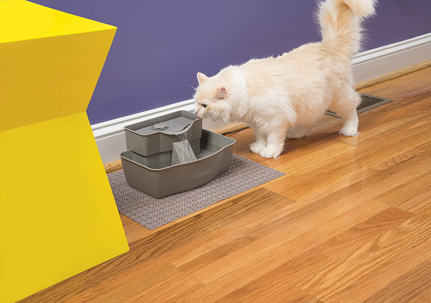Features to look for in a cat water fountain