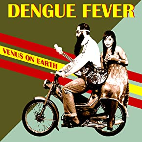 Image of Dengue Fever