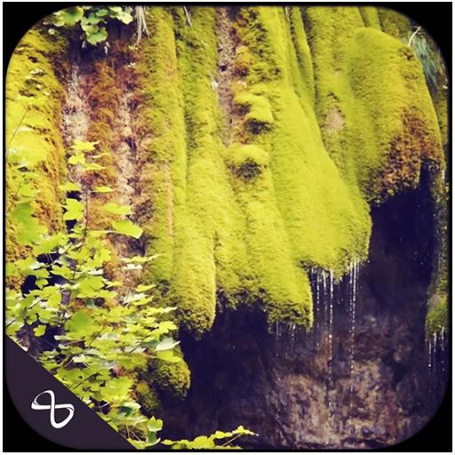 water-through-greens
