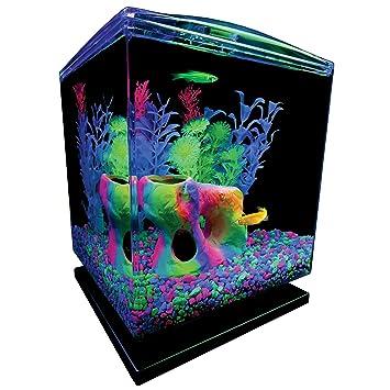 Glofish Tank GloFish Aquarium Kit