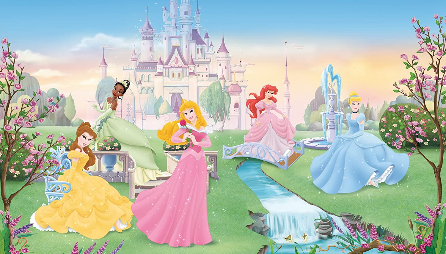 Disney princess birthday party photo backdrops birthday for Disney wall mural