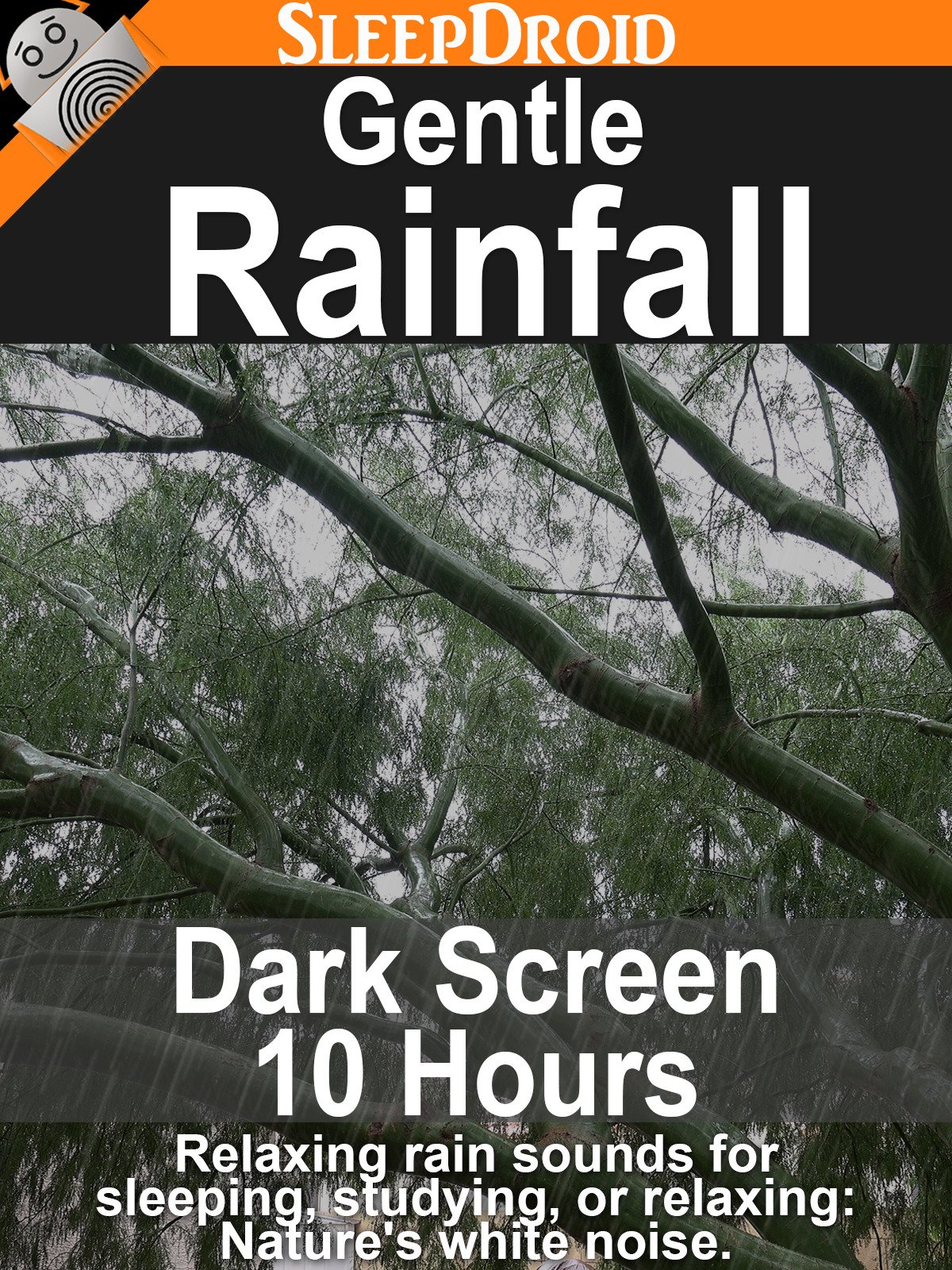 Gentle Rainfall: Dark Screen 10 hours of Relaxing Rain Sounds for Sleeping, Studying, or Relaxing: Nature's White Noise.