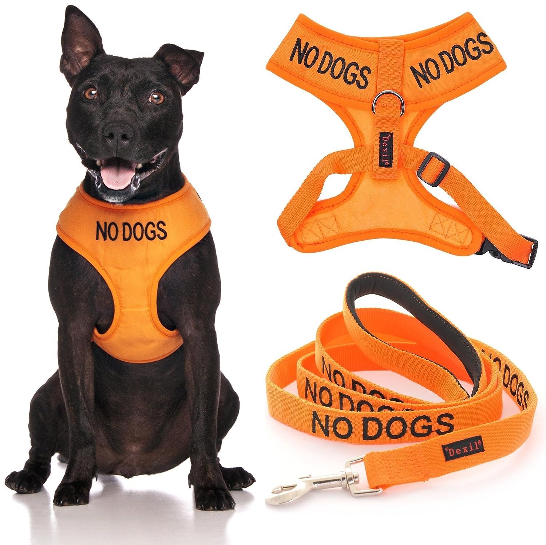 Dog Vest Leash Vest Dog Harness 4 Foot