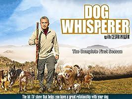 Dog Whisperer Season 1