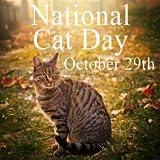 ナショナル猫の日