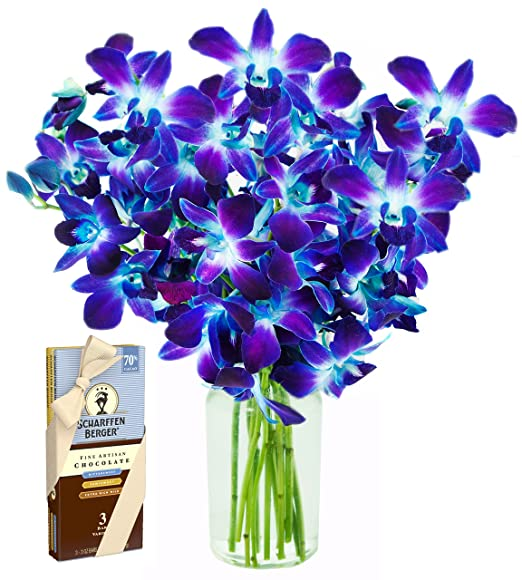 Blue Orchid Bouquet | 10 Stems | Scharffen Berger Chocolate | Vase