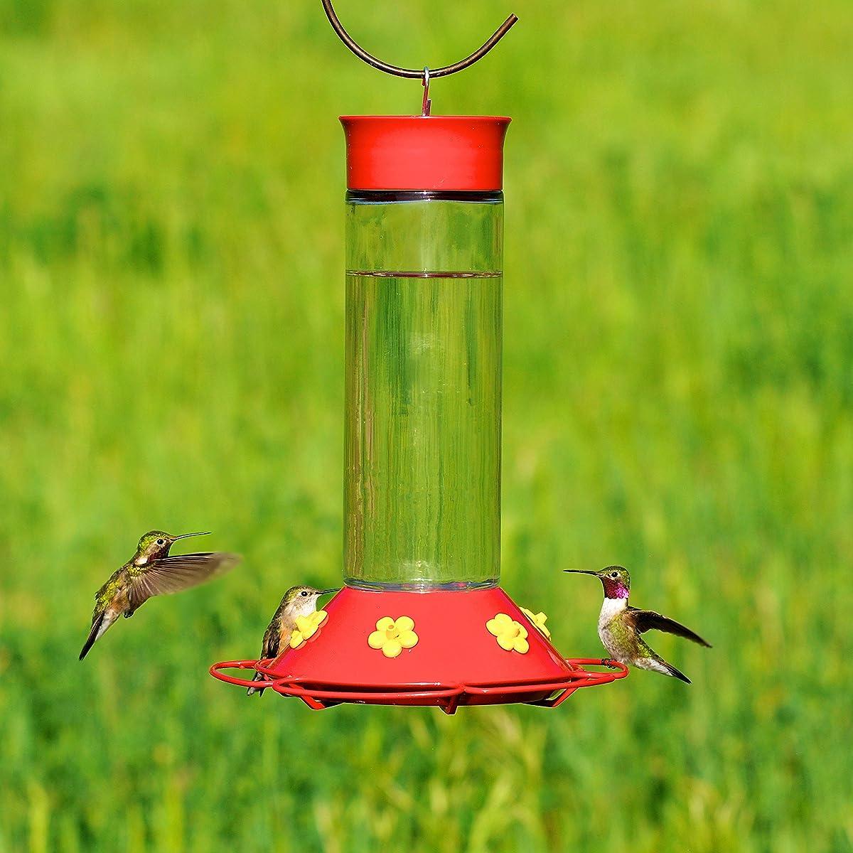 Perky-Pet 209B Our Best Glass Hummingbird Feeder